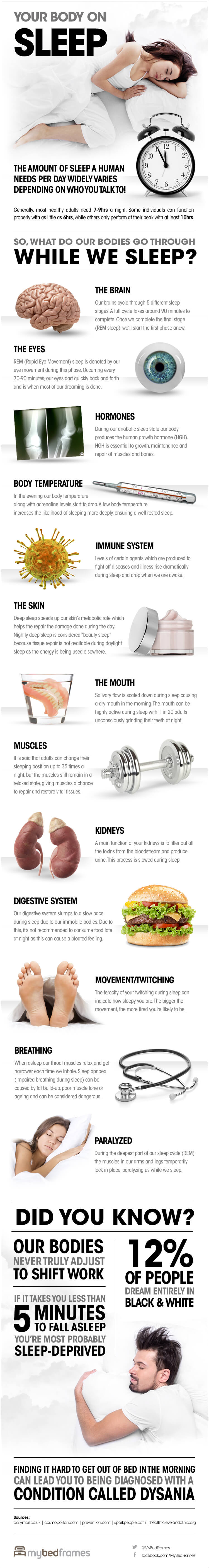 Your Body On Sleep [Infographic]